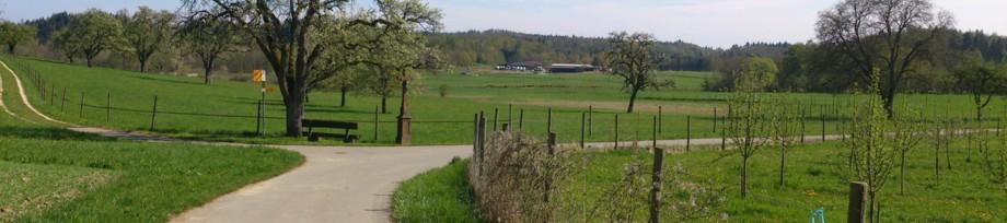 Pferdefreunde Buchholzhof